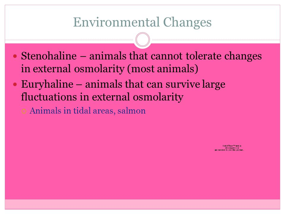 Environmental Changes