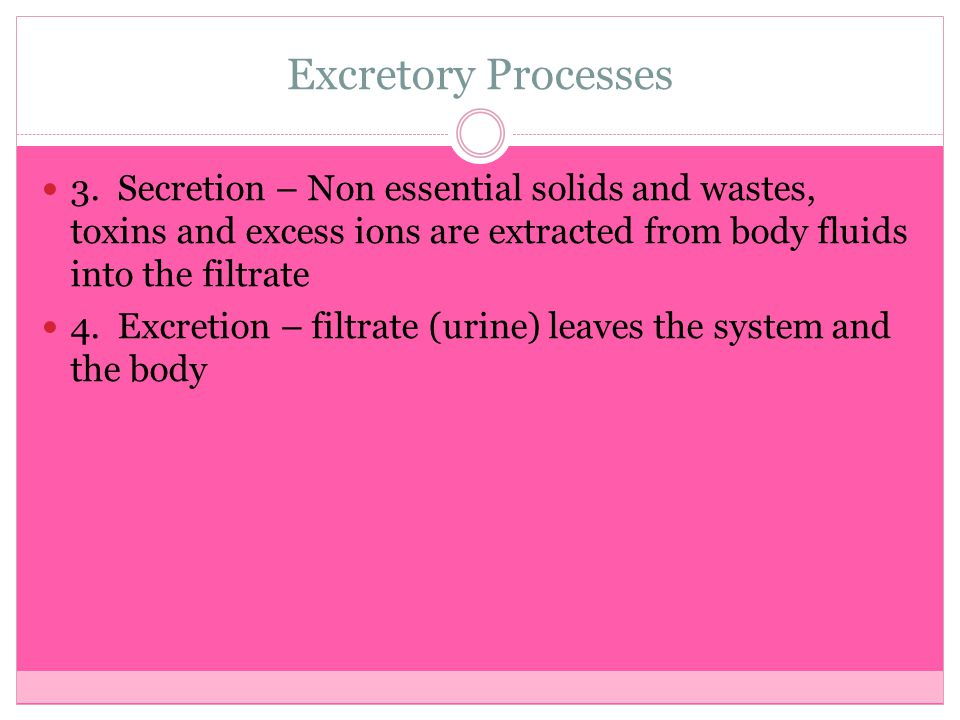 Excretory Processes 3. Secretion – Non essential solids and wastes, toxins and excess ions are extracted from body fluids into the filtrate.