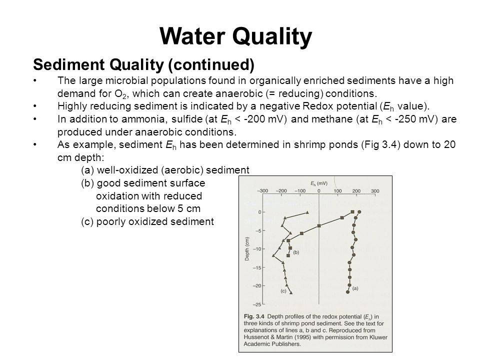 Water Quality Sediment Quality (continued)