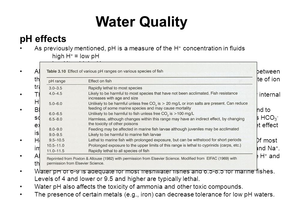 Water Quality pH effects