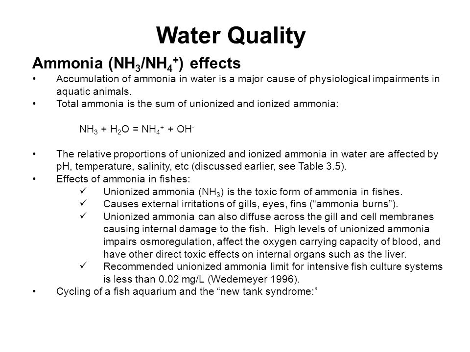 Water Quality Ammonia (NH3/NH4+) effects