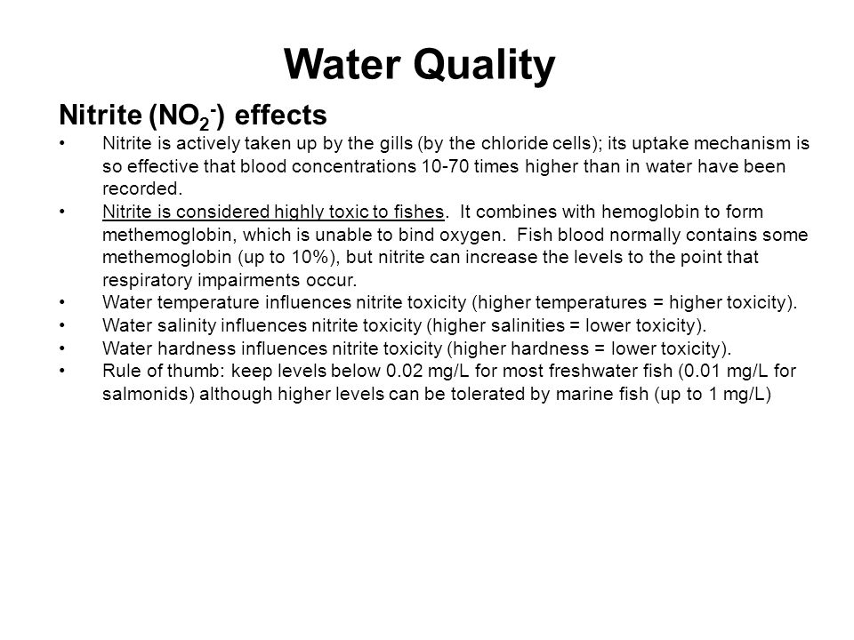 Water Quality Nitrite (NO2-) effects