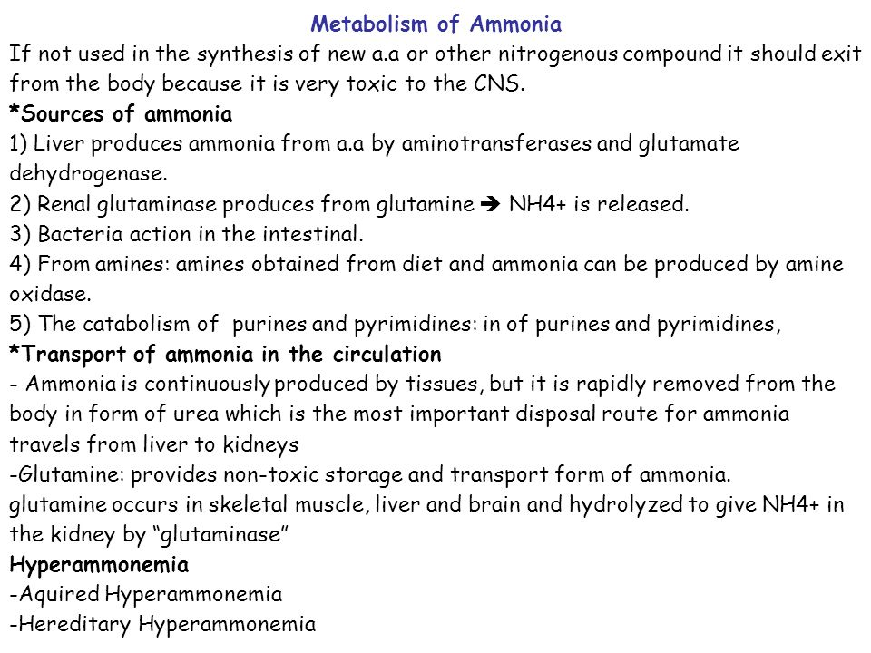 Metabolism of Ammonia