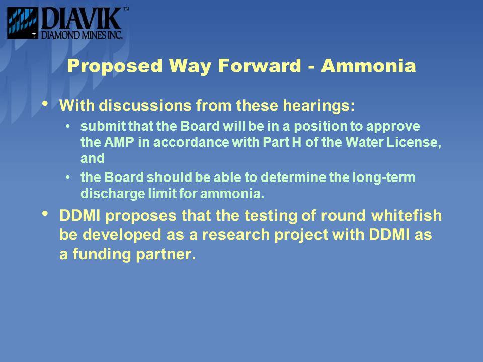 Proposed Way Forward - Ammonia