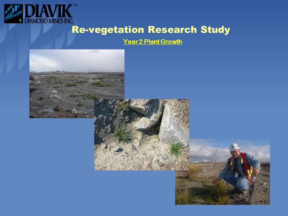 Re-vegetation Research Study