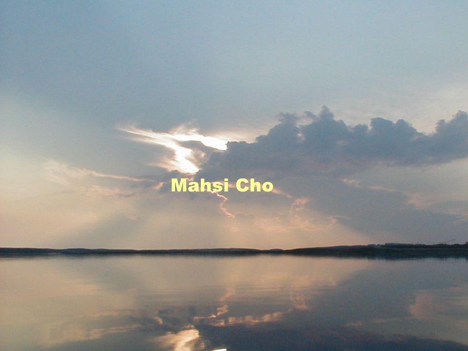 Mahsi Cho