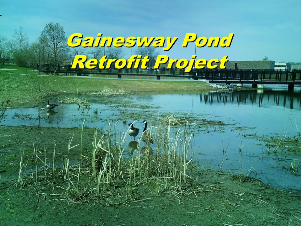 Gainesway Pond Retrofit Project