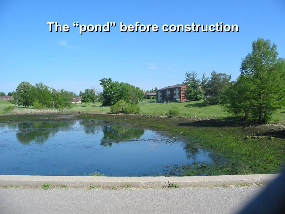 The pond before construction