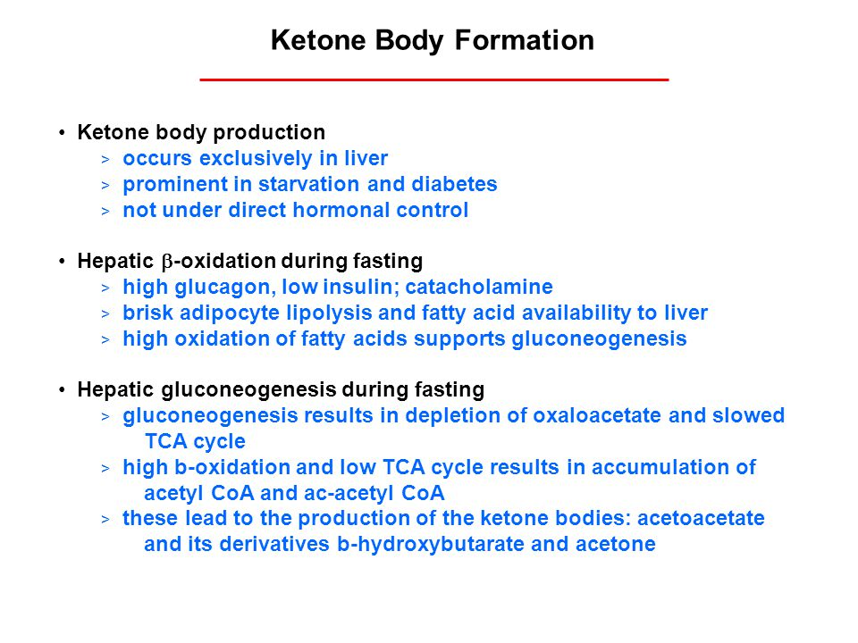 Ketone Body Formation Ketone body production