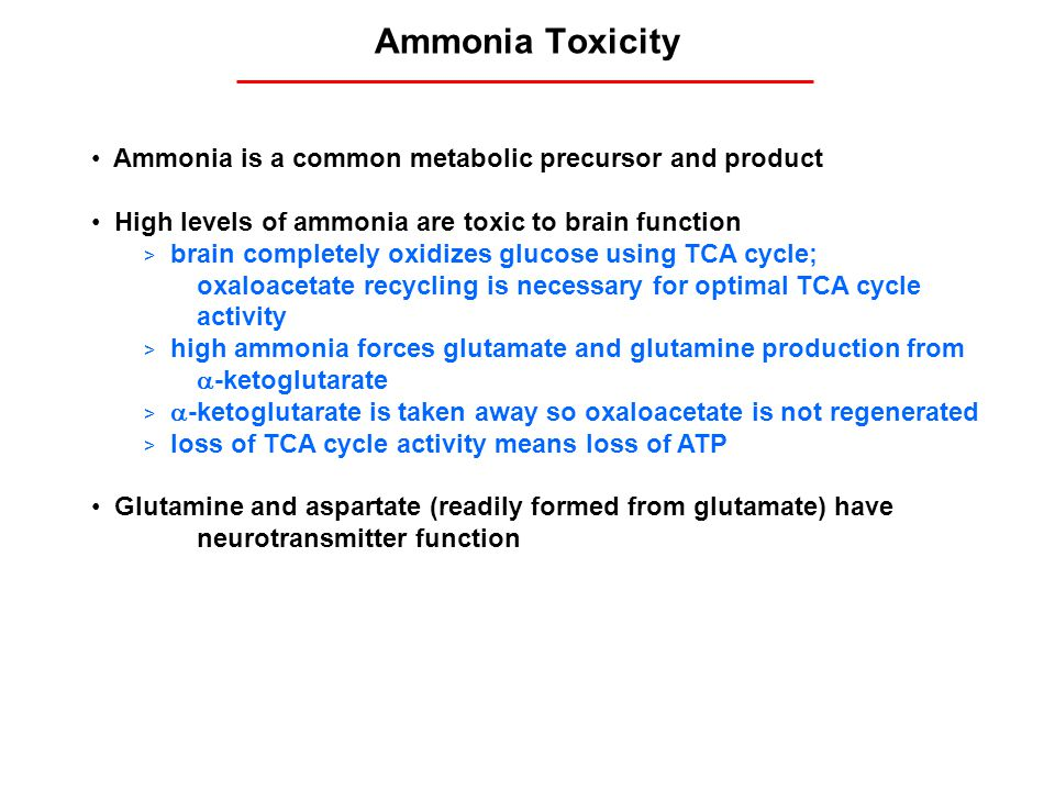 Ammonia Toxicity Ammonia is a common metabolic precursor and product