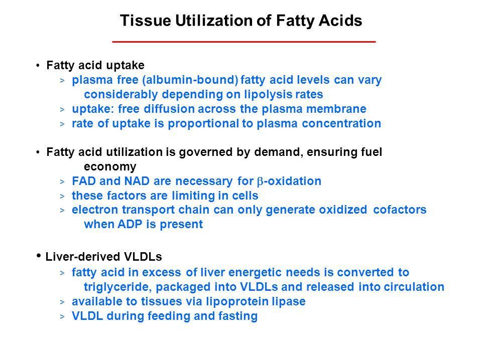 Tissue Utilization of Fatty Acids