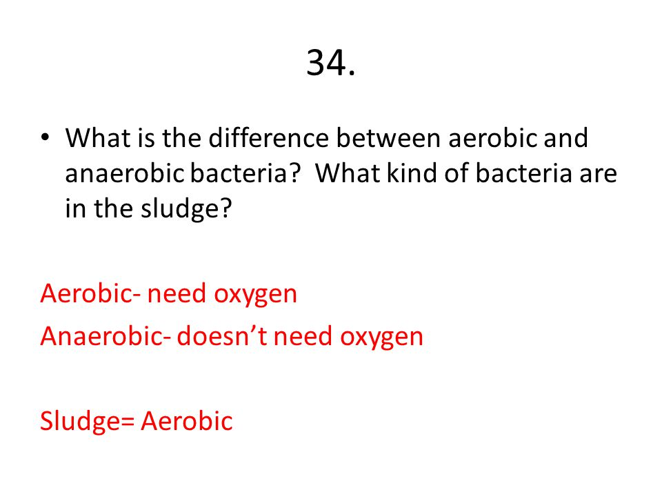 34. What is the difference between aerobic and anaerobic bacteria What kind of bacteria are in the sludge
