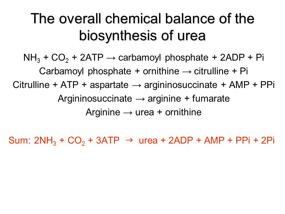 The overall chemical balance of the biosynthesis of urea