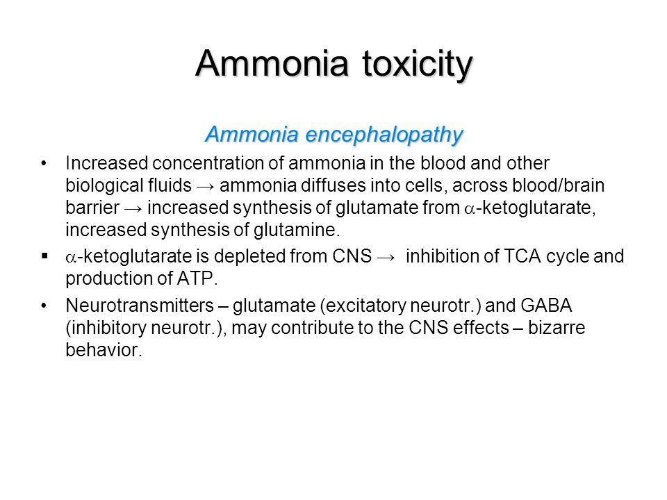 Ammonia encephalopathy