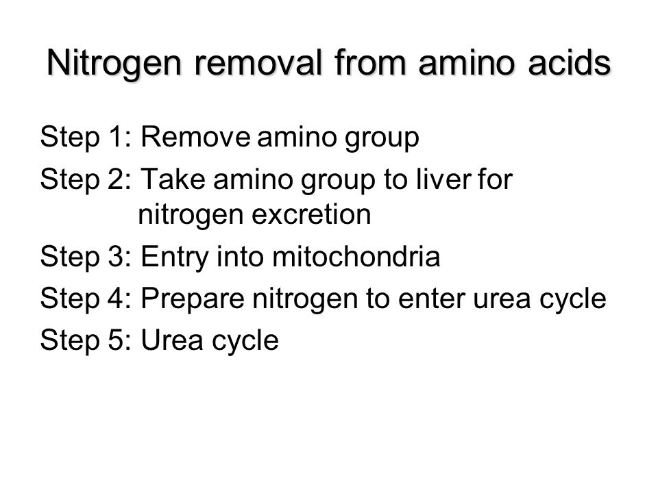Nitrogen removal from amino acids