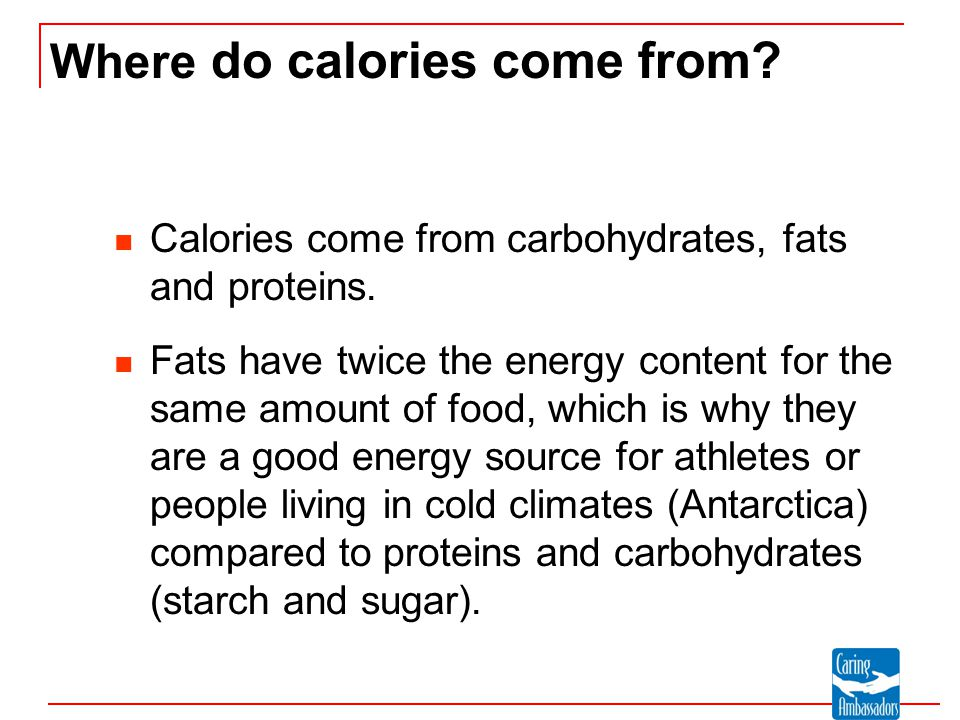 Where do calories come from
