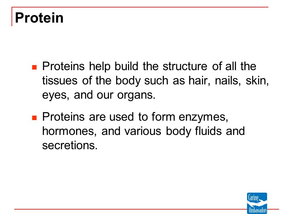 Protein Proteins help build the structure of all the tissues of the body such as hair, nails, skin, eyes, and our organs.
