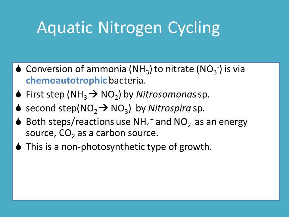 Aquatic Nitrogen Cycling