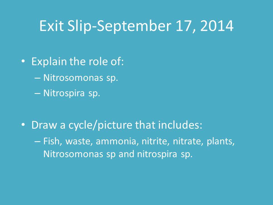 Exit Slip-September 17, 2014 Explain the role of: