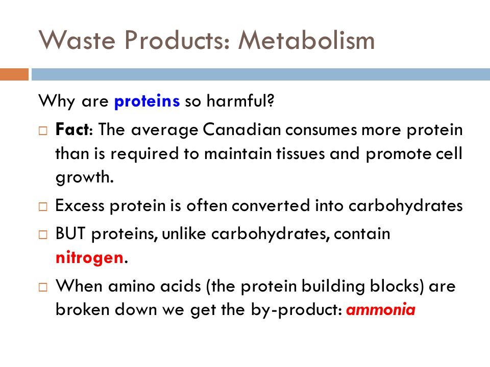 Waste Products: Metabolism