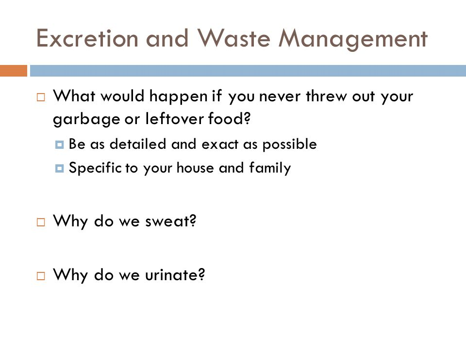 Excretion and Waste Management