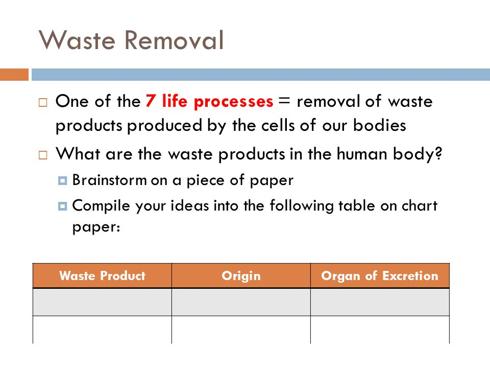 Waste Removal One of the 7 life processes = removal of waste products produced by the cells of our bodies.