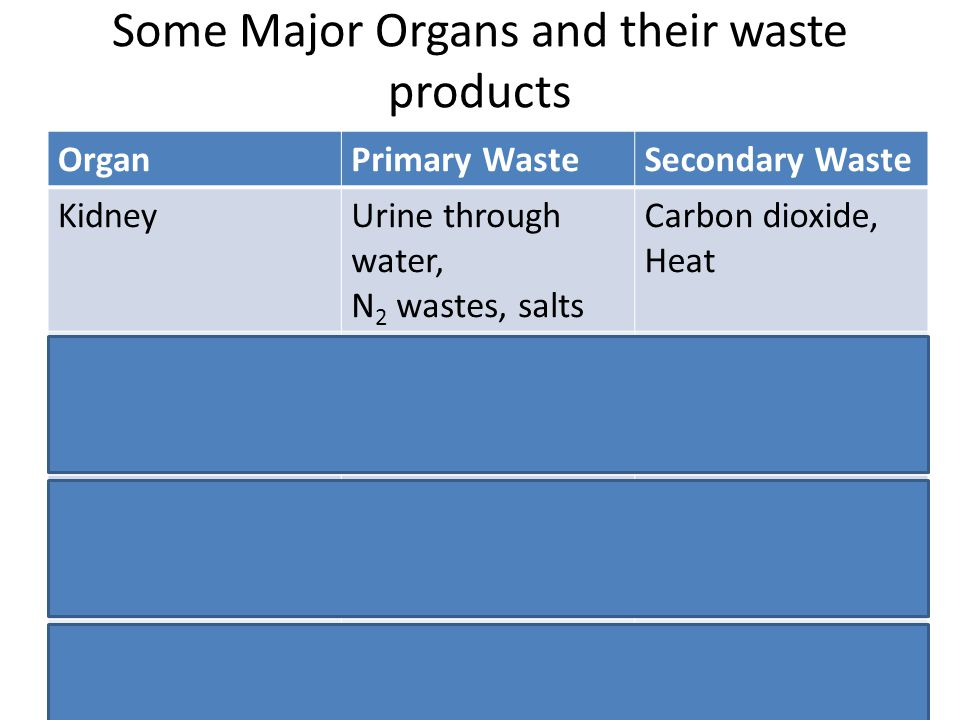 Some Major Organs and their waste products