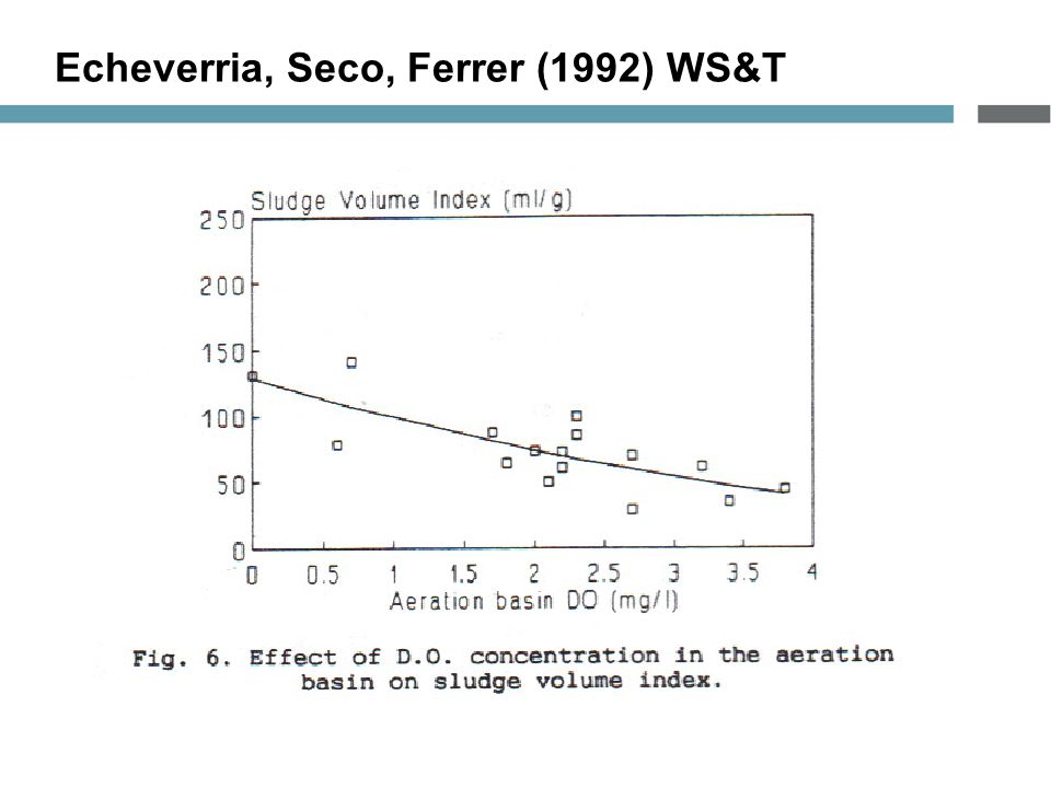 Echeverria, Seco, Ferrer (1992) WS&T