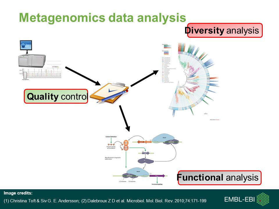 Metagenomics data analysis