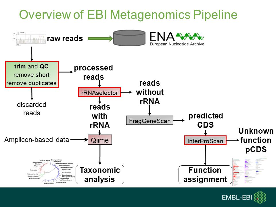 Overview of EBI Metagenomics Pipeline