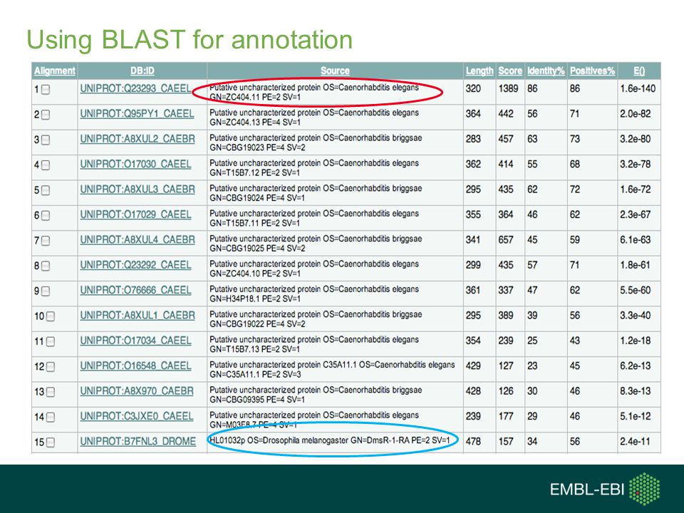 Using BLAST for annotation