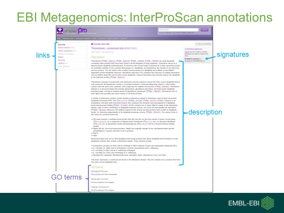 EBI Metagenomics: InterProScan annotations