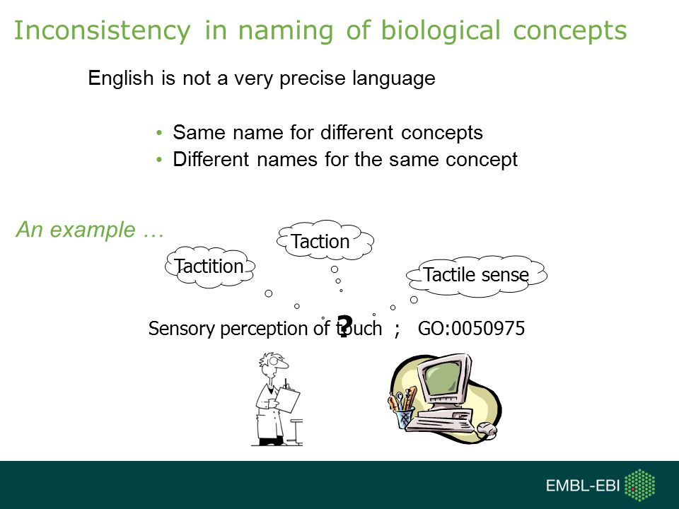Inconsistency in naming of biological concepts An example …