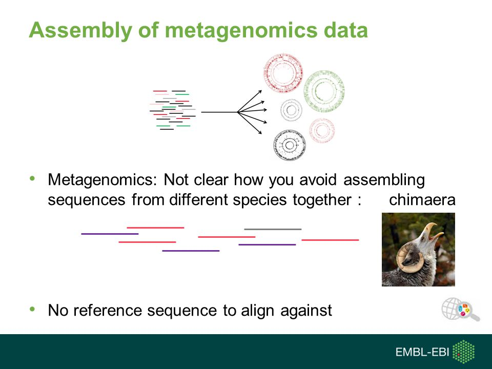 Assembly of metagenomics data