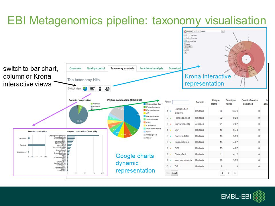 EBI Metagenomics pipeline: taxonomy visualisation