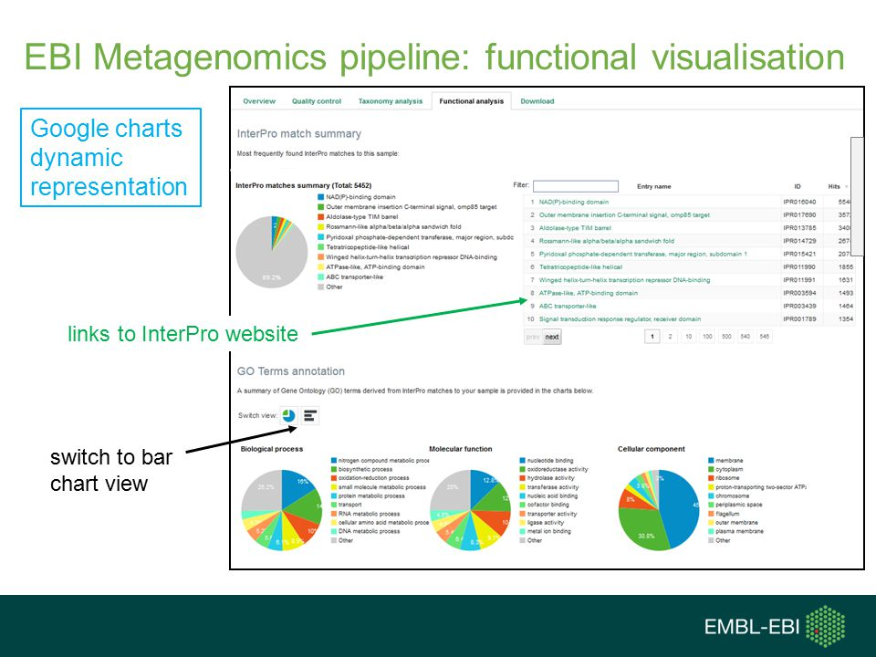 EBI Metagenomics pipeline: functional visualisation