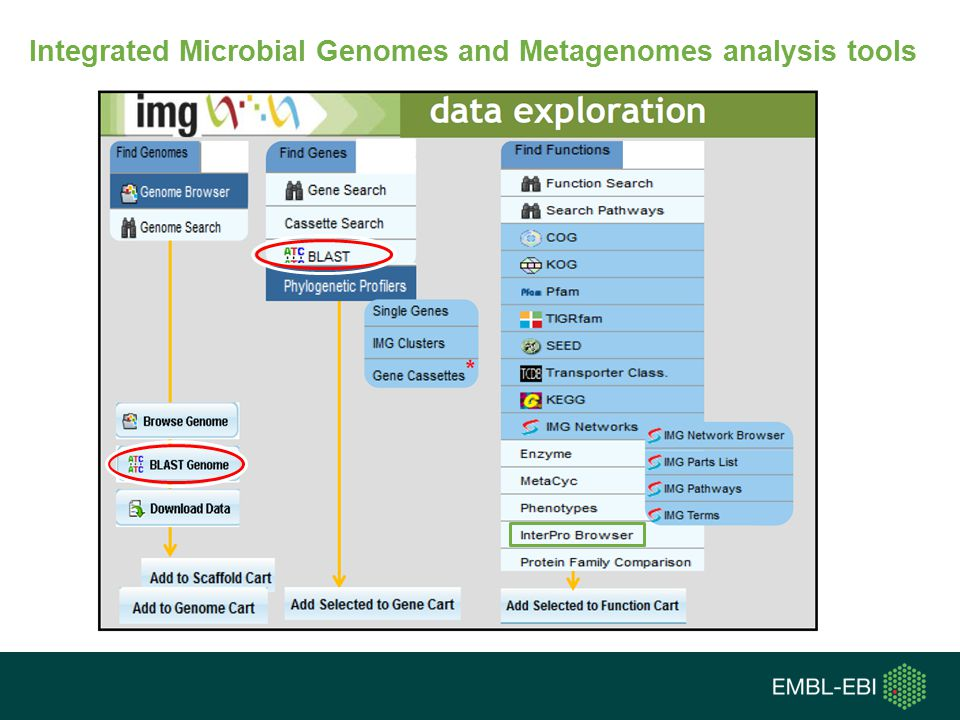 Integrated Microbial Genomes and Metagenomes analysis tools