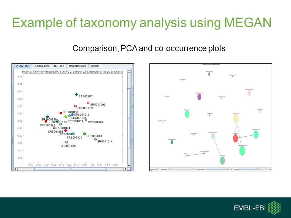 Example of taxonomy analysis using MEGAN
