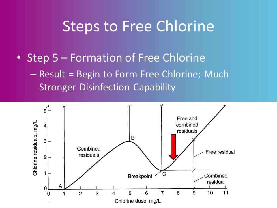 Steps to Free Chlorine Step 5 – Formation of Free Chlorine