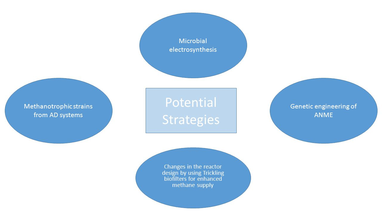 Potential Strategies Microbial electrosynthesis