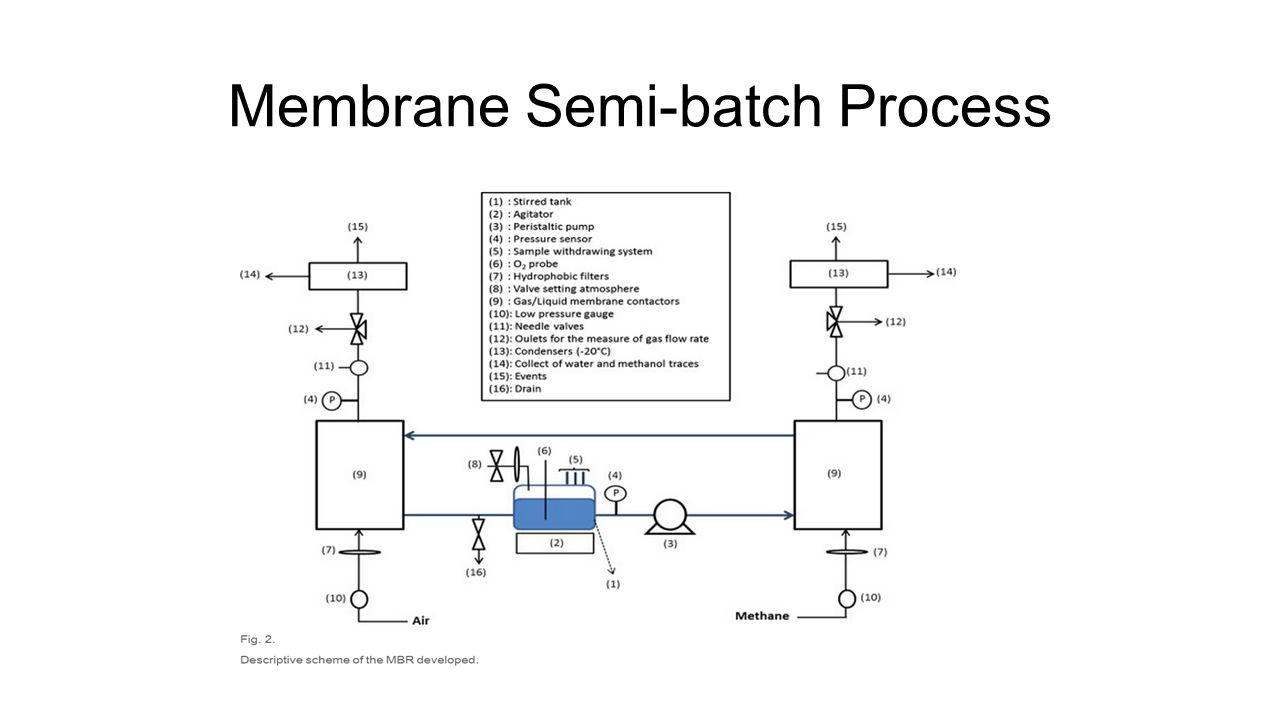 Membrane Semi-batch Process
