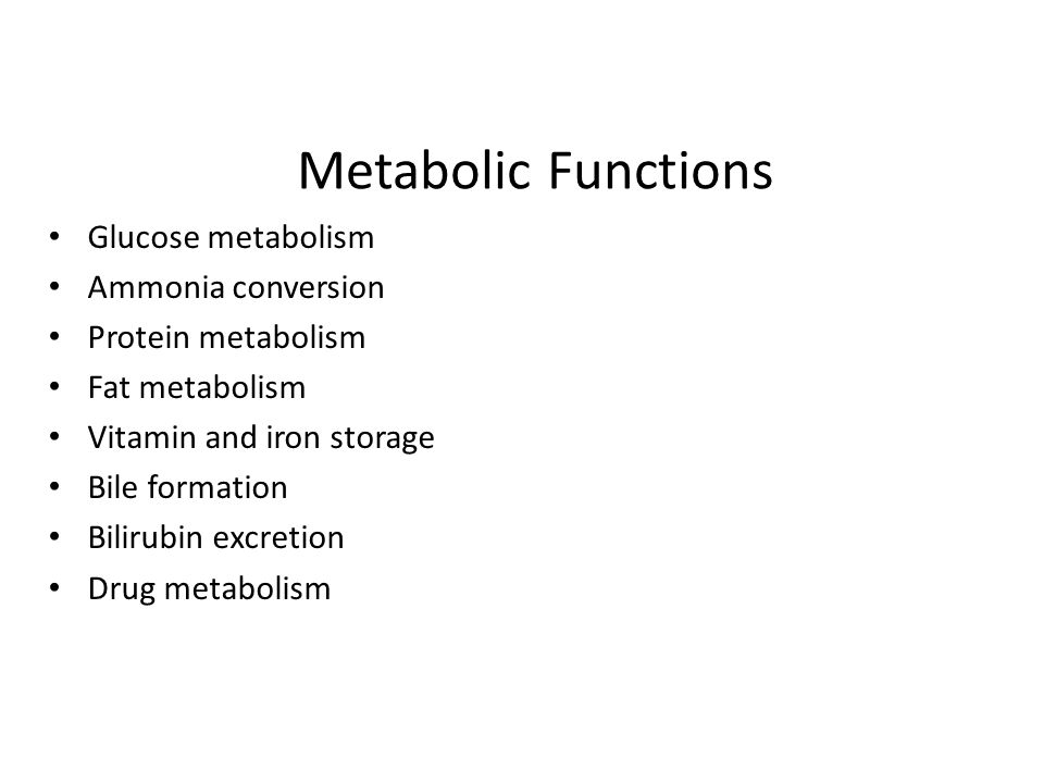 Metabolic Functions Glucose metabolism Ammonia conversion