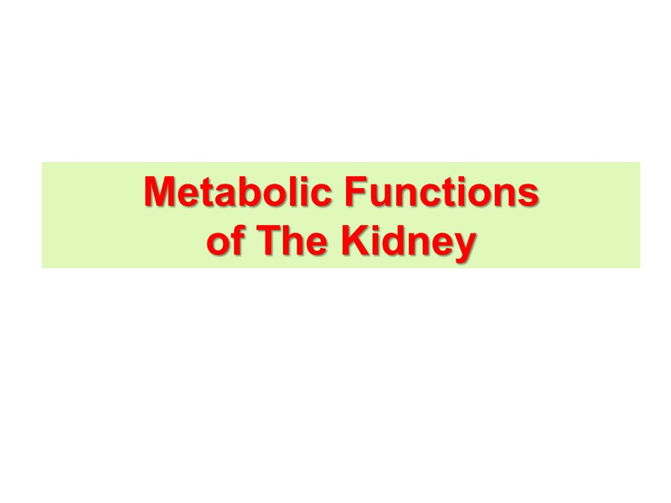 Metabolic Functions of The Kidney