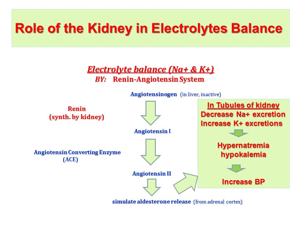Role of the Kidney in Electrolytes Balance