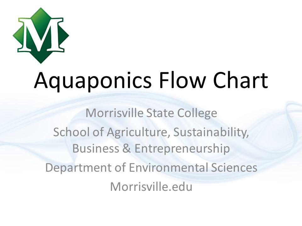 Aquaponics Flow Chart Morrisville State College