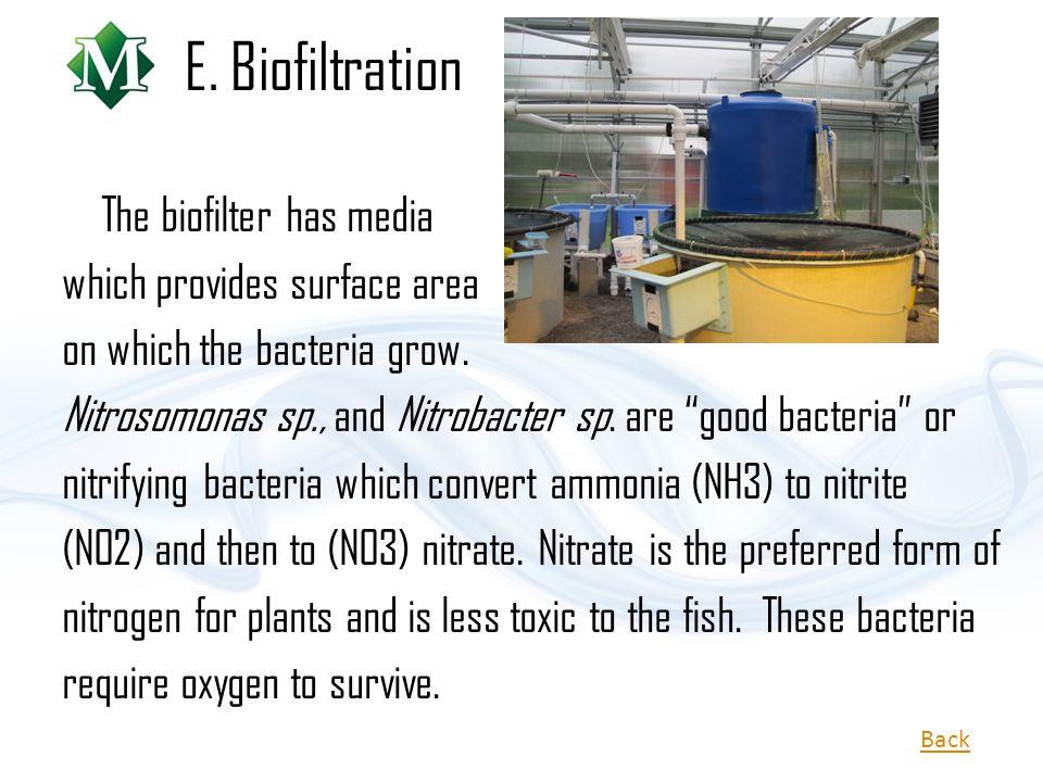E. Biofiltration The biofilter has media which provides surface area