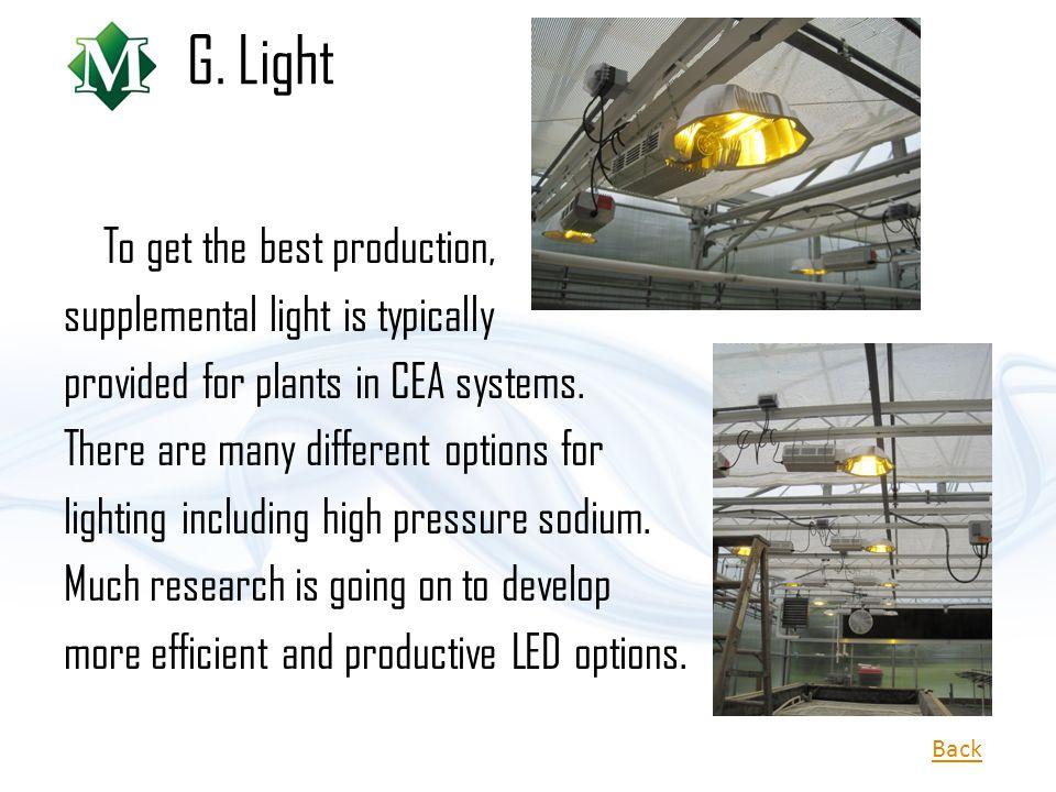 G. Light