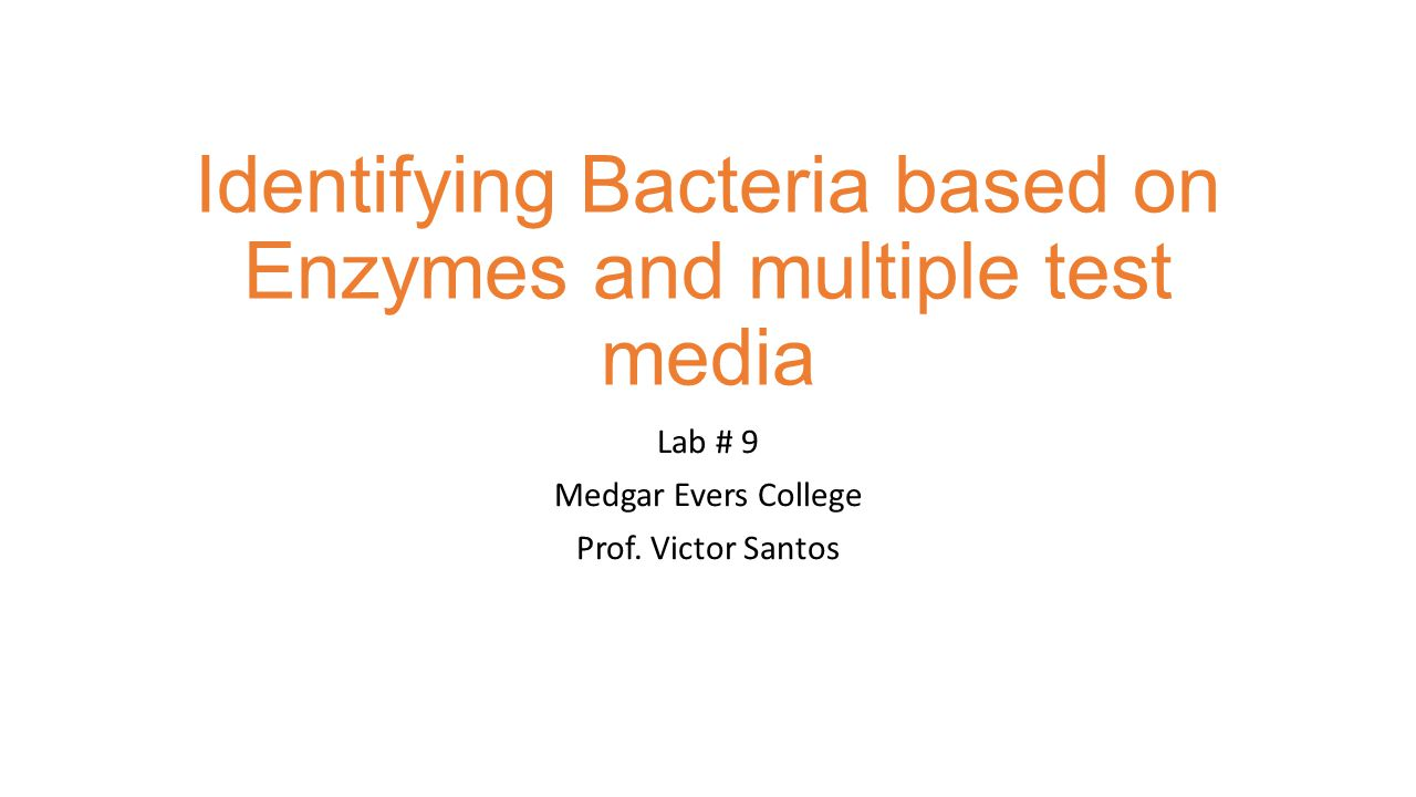 Identifying Bacteria based on Enzymes and multiple test media