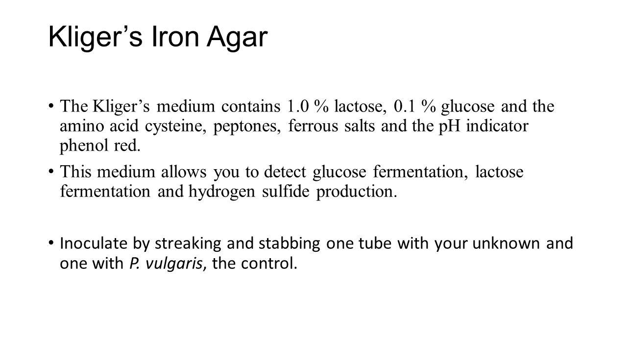 Kliger's Iron Agar