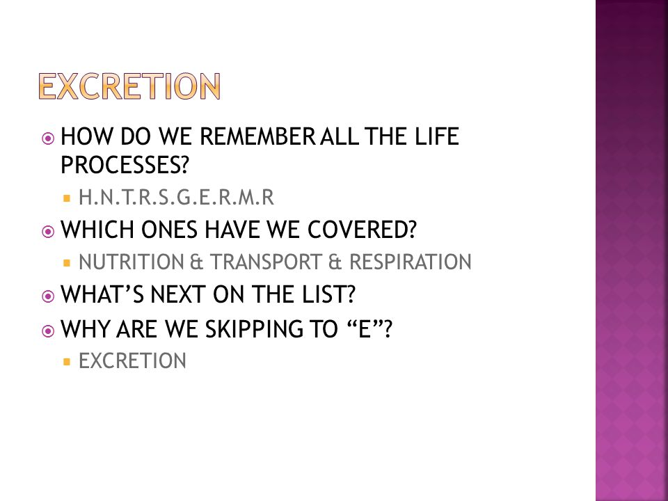 EXCRETION HOW DO WE REMEMBER ALL THE LIFE PROCESSES